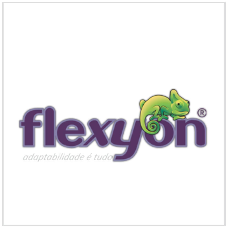 logo_flexyon